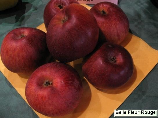 Les Pommes Ad