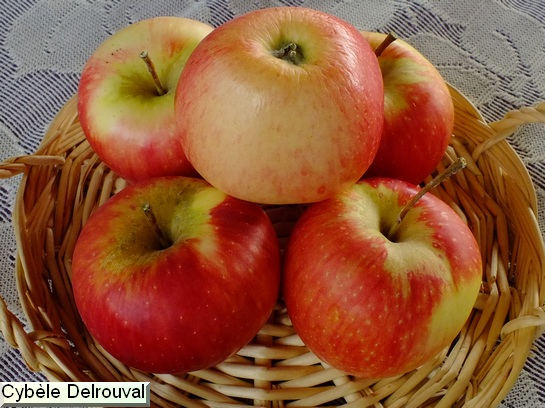 Pomme Cybele® Delrouval
